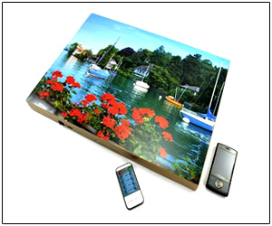 Mobile Phone Jammer In Painting